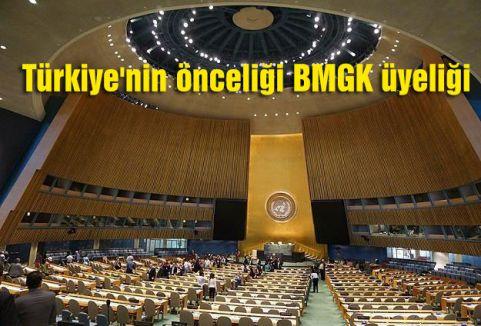 Türkiye'nin önceliği BMGK üyeliği