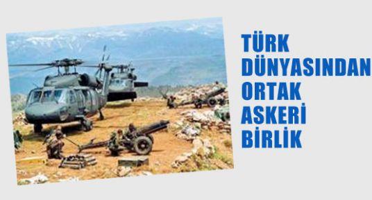 Türklerden Ortak Askeri Birlik