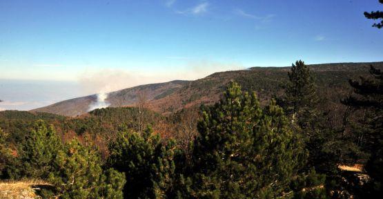 Uludağ'daki yangın söndürüldü...