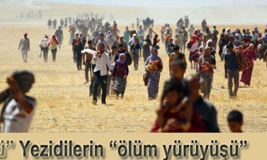 """Yezidilerin """"ölüm yürüyüşü"""""""